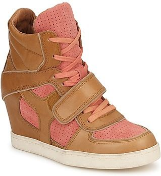 Ash BUTY COCA Brown / KORAL