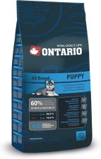 Ontario All Breed Puppy 13kg