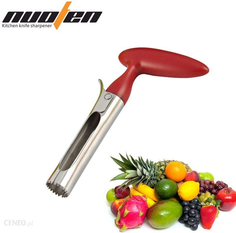 Kitchen Accessories Brands: ALIEXPRESS NUOTEN BRAND STAINLESS STEEL APPLE AND FRUIT