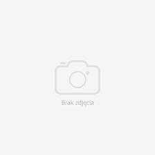 4d9d768e7 Nike Koszulka Chłopięca Reprezentacji Polski Poland Junior Away Supporters  846807 611