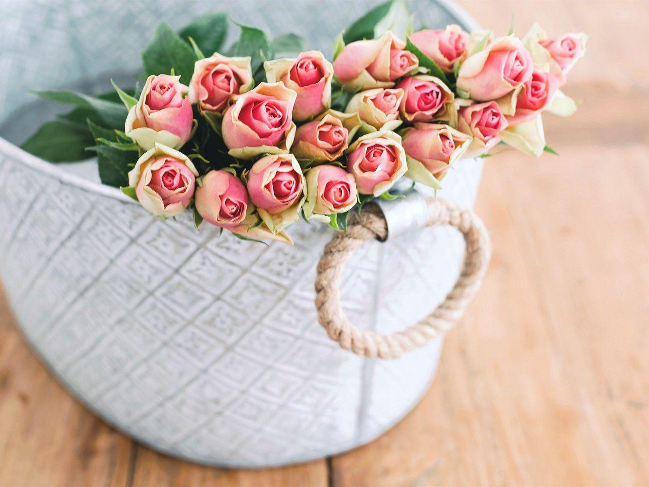 Czy Wiesz Co Znacza Kwiaty Ktore Od Niego Dostalas Magazyn Ceneo Pl