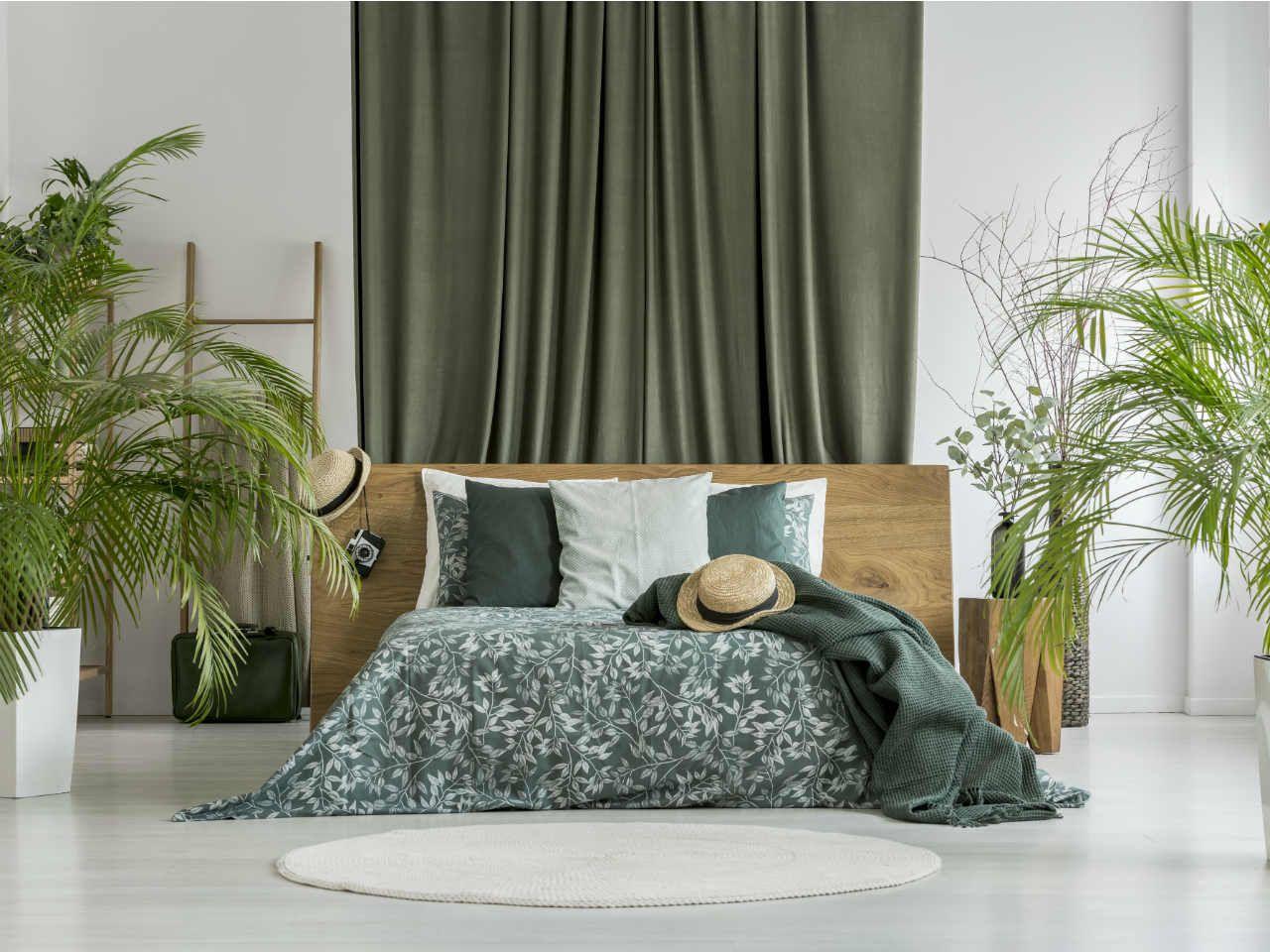 Jakie kwiaty do sypialni? Rośliny, które warto wybrać - Wnętrza ze ...