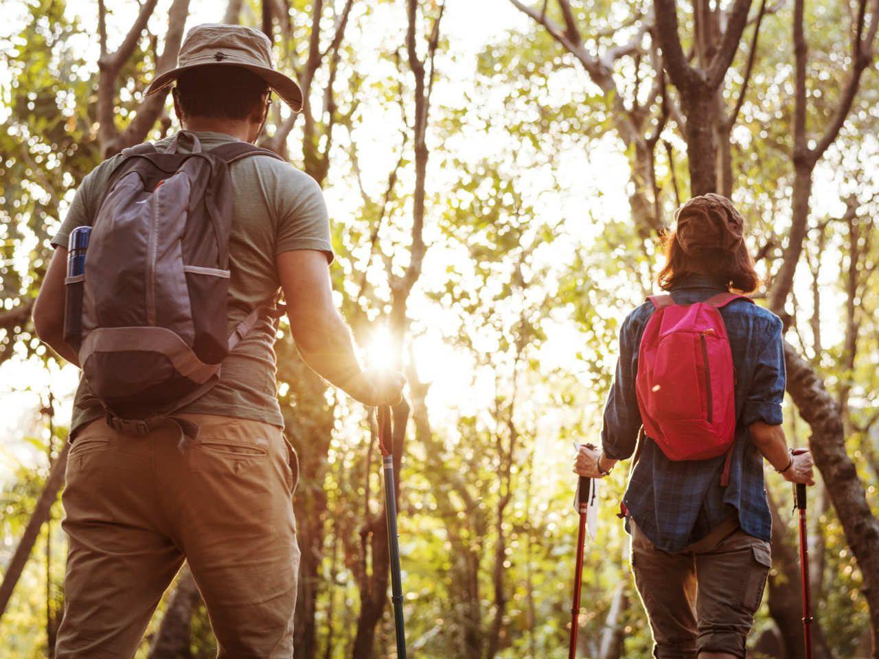 Czy chodzenie z kijkami pomaga schudnąć