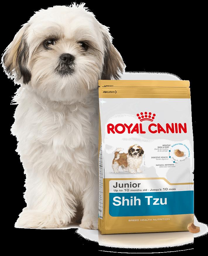 karma royal canin shih tzu junior 2x1 5kg ceny i opinie. Black Bedroom Furniture Sets. Home Design Ideas