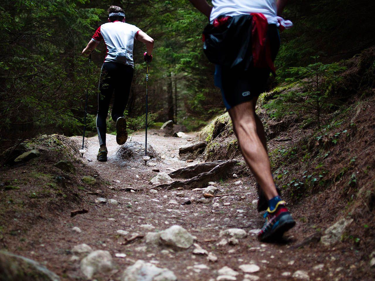 Buty trekkingowe – jak wybrać najlepsze? Magazyn Ceneo.pl