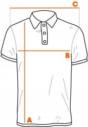 Ombre Męska koszulka Polo polÓwka S1048 mięta S - Ceny i opinie T-shirty i koszulki męskie WUWP