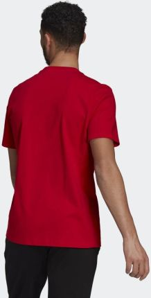 Adidas Essentials Big Logo Tee GK9124 - Ceny i opinie T-shirty i koszulki męskie XEEV