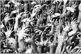 5107d7956f8027 Obraz na płótnie OLU031_11 - Las rąk - Opinie i atrakcyjne ceny na ...