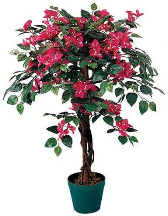 Sztuczne Kwiaty Od Allegro Na Ceneopl