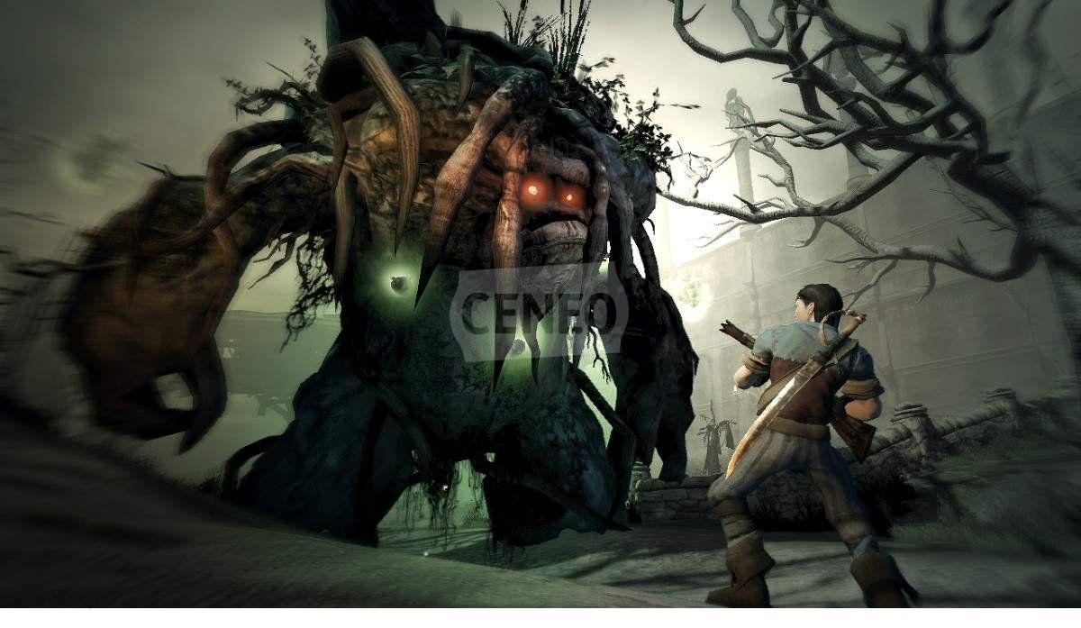 Fable 2 (Gra Xbox 360)