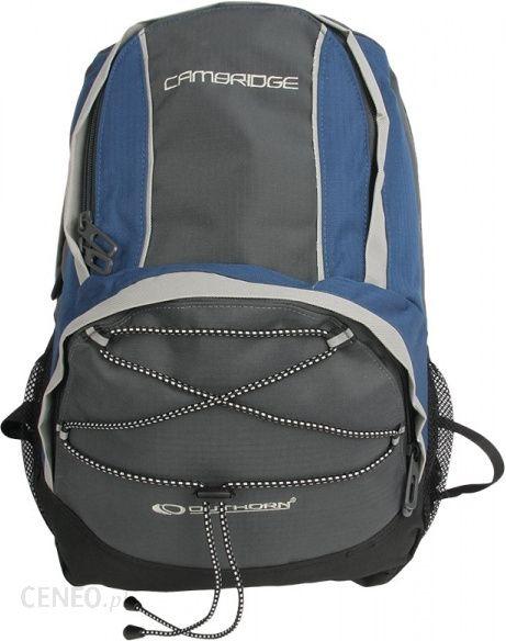 68fea7687f755 Plecak Outhorn Cambridge - Ceny i opinie - Ceneo.pl