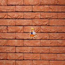 Vandersanden Group Klinkierowa Orange 30 Df 210x20x65mm