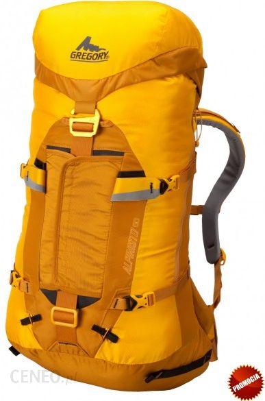 6e10152c9d3f5 Plecak Gregory Alpinisto™ 50 - Ceny i opinie - Ceneo.pl