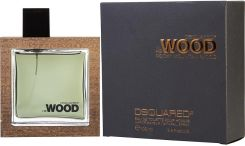 Dsquared2 He Wood Rocky Mountain Wood Woda toaletowa 100ml spray