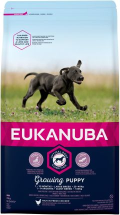 Eukanuba Growing Puppy Large Breed bogata w świeżego kurczaka 3kg