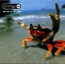 The Prodigy - The Fat Of The Land (CD)