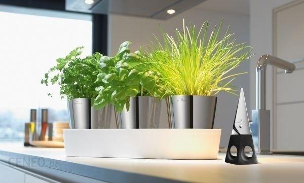Auerhahn Doniczki Na Zioła Z Systemem Nawadniającym Herbs 30012506