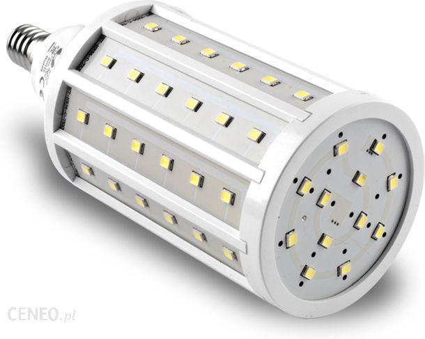 force light led e14 72 smd2835 12w 100w 1150lm 230v ciep a 6973 zdj cie 1. Black Bedroom Furniture Sets. Home Design Ideas