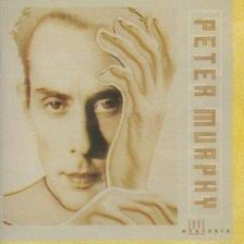 Peter Murphy - Open Doors (CD)