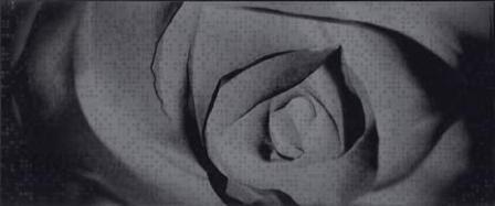 Ceramika Color Roza Efekt Czarna Dekor 26x60