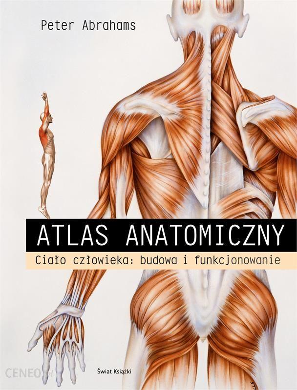 Atlas Anatomiczny Cialo Czlowieka Budowa I Funkcjonowanie Ceny I