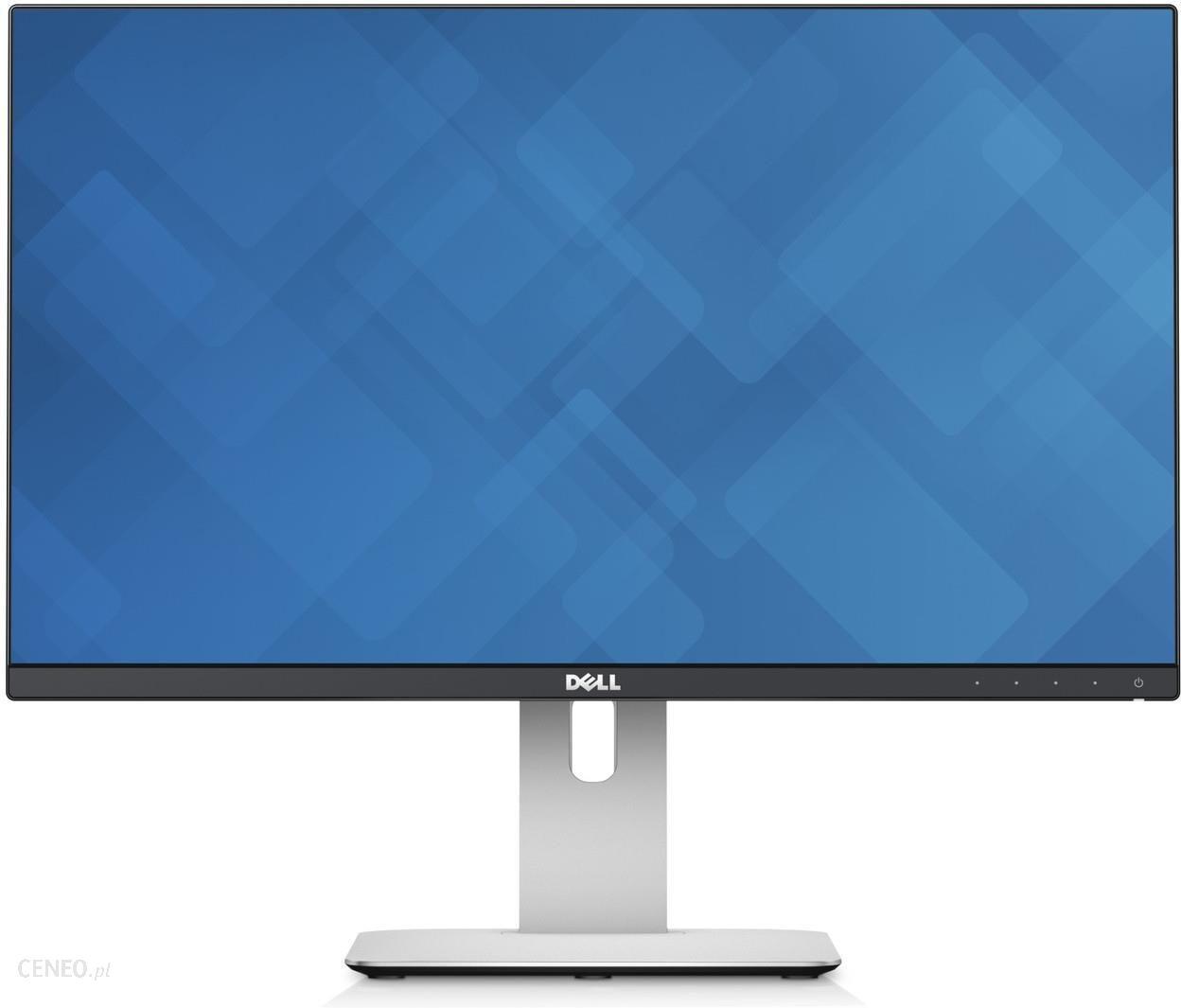 """""""Dell 24.1"""" monitorius"""