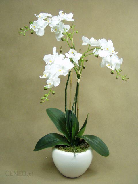 Storczyki Białe Jak żywe 19111 Doniczka Biała Sztuczne Kwiaty