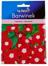 Top Decor Barwinek pospolity karłowy ND55950