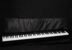 Ewpol pokrowiec na instrument Yamaha S30 - Ceny i opinie - Ceneo pl