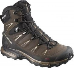 BUTY SALOMON X ULTRA TREK GTX BROWN