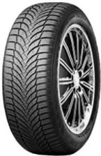 Nexen Winguard Snow'G WH2 205/55R16 91 H