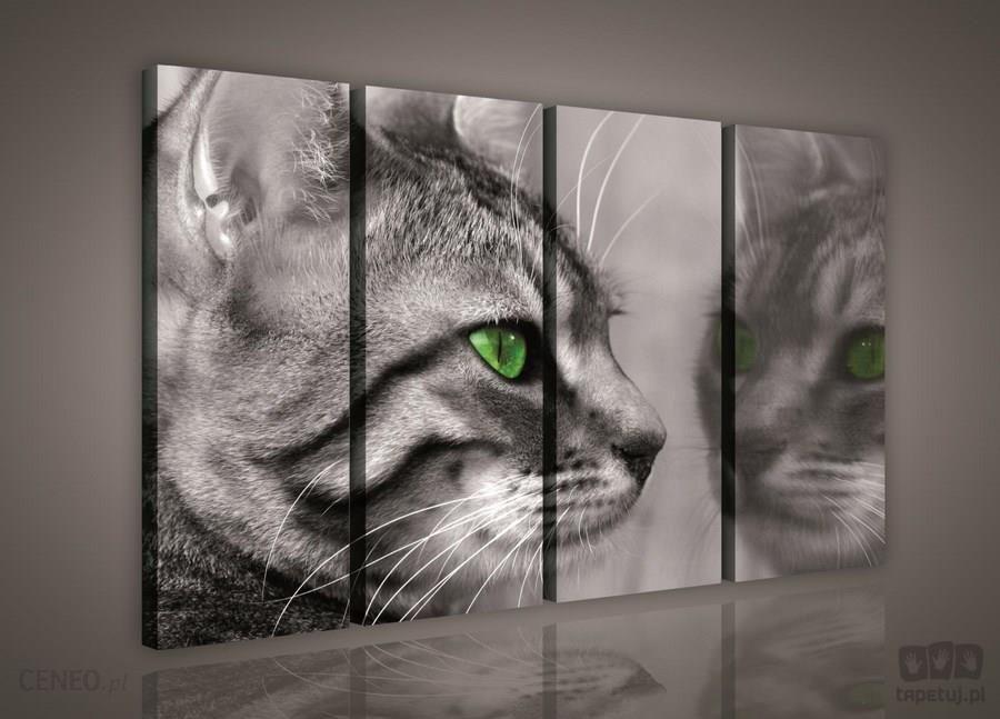 Obraz Kot Ps181s7 Opinie I Atrakcyjne Ceny Na Ceneopl