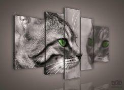 Obraz Kot Ps181s4a Opinie I Atrakcyjne Ceny Na Ceneopl