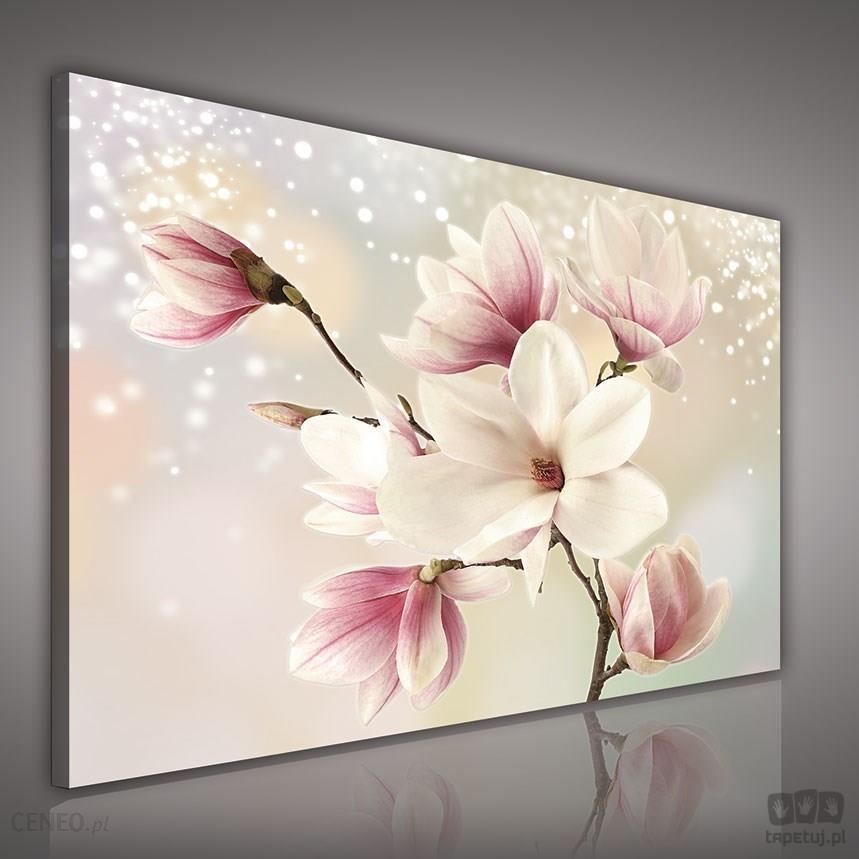 obraz kwiaty na srebrnym tle pp2134 zdj cie 1. Black Bedroom Furniture Sets. Home Design Ideas
