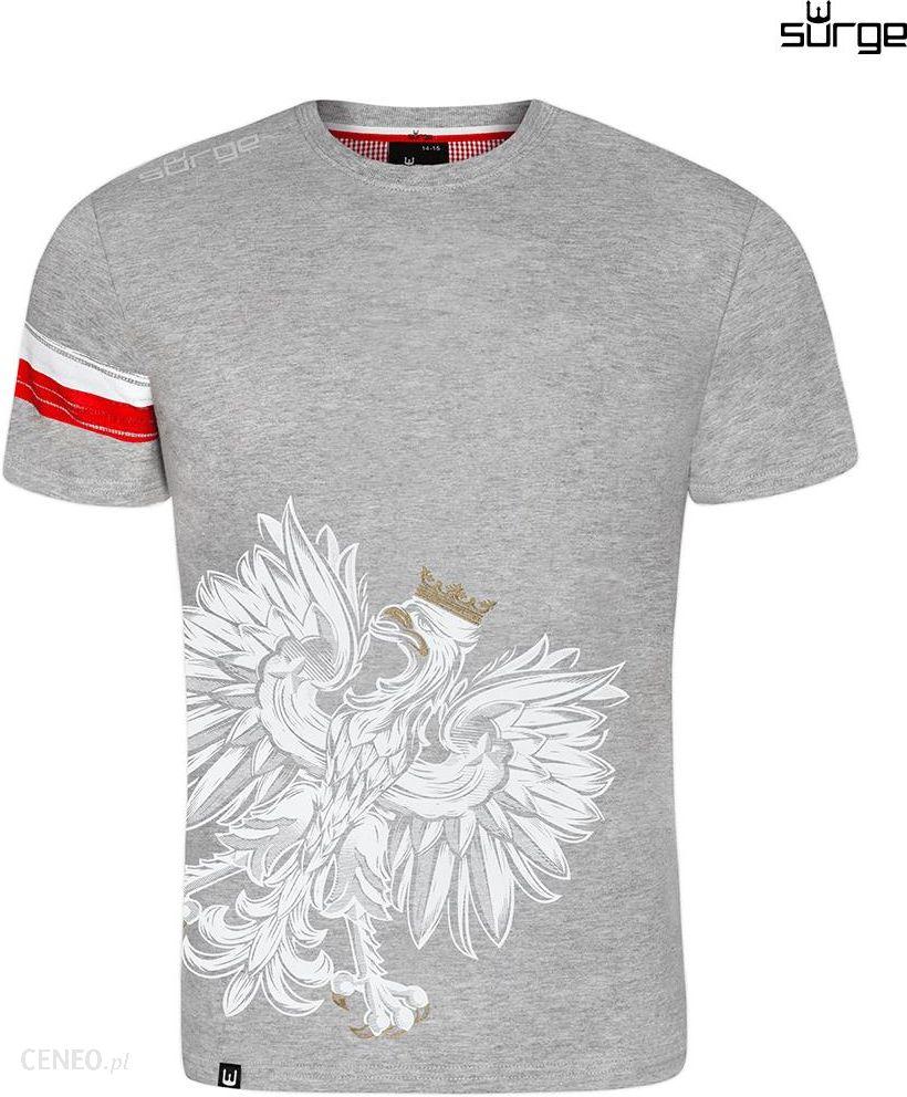 e69a3580df6f Surge Polonia Koszulka patriotyczna dziecięca Orzeł Sport Opaska (JASNY  MELANŻ) - zdjęcie 1