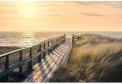 Leroy Merlin Plakat Maxi Way To The Sea Lmmaxiposter103 Opinie I Atrakcyjne Ceny Na Ceneopl