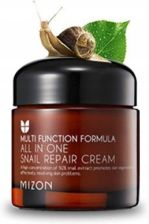 Mizon Multi Function Formula Krem Regenerujący z Ekstraktem Ze Śluzu z Ślimaka 92% All In One Snail Repair Cream 75ml