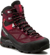 Trekkingi SALOMON X Alp Mtn Gtx W 375946 20 G0 Black