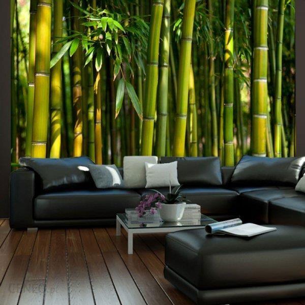 d0cea82025 Fototapeta - Azjatycki las bambusowy - Opinie i ceny na Ceneo.pl