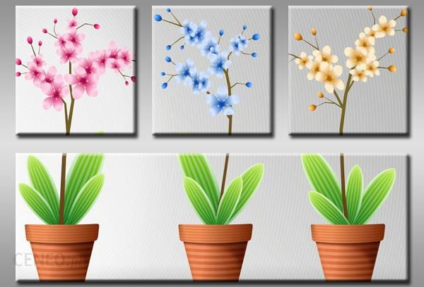 Obraz Wzór C4obraz0582 Kwiaty Doniczki