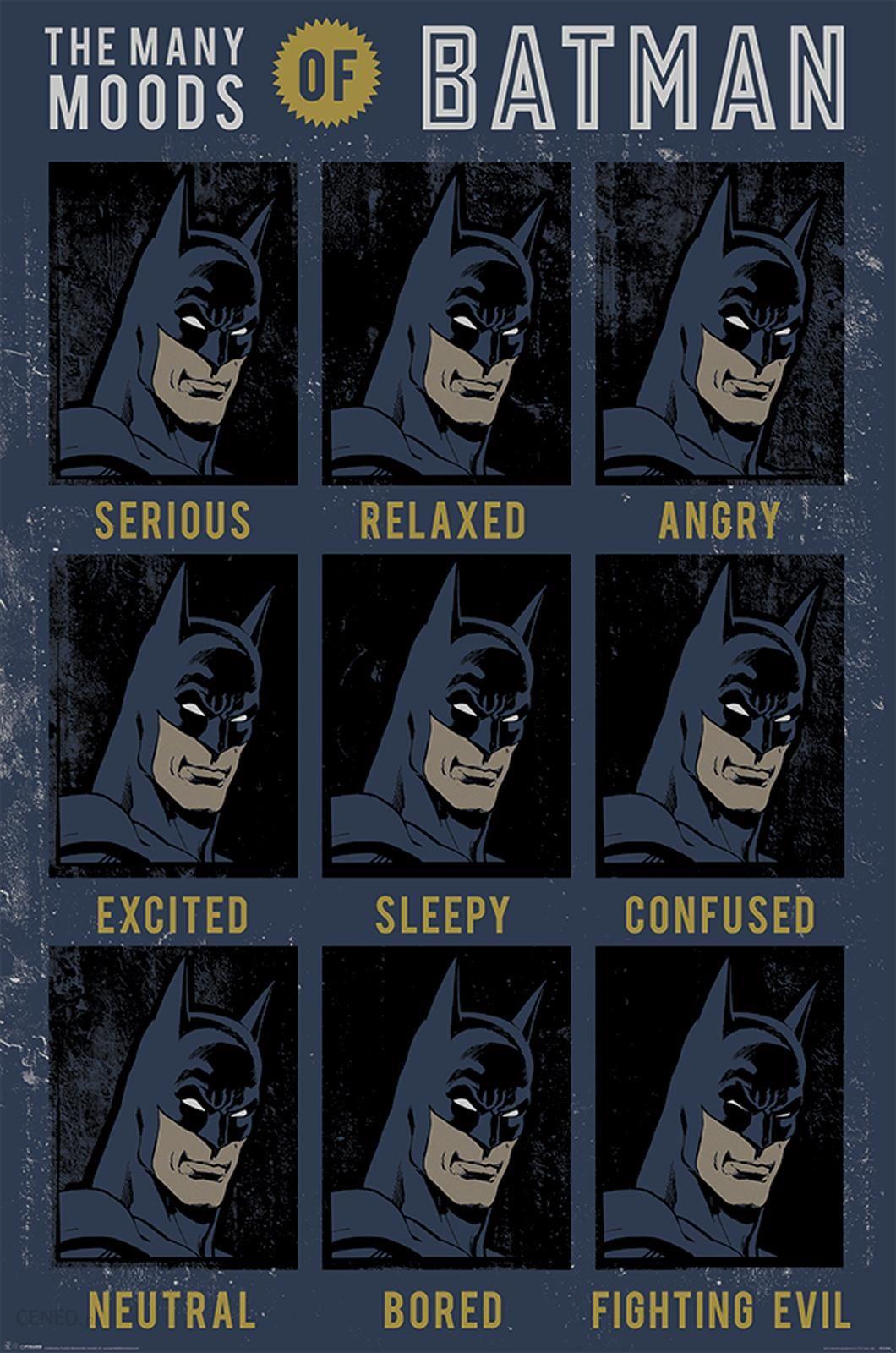 Dc Comics The Many Moods Of Batman Plakat 61x915 Cm Opinie I Atrakcyjne Ceny Na Ceneopl