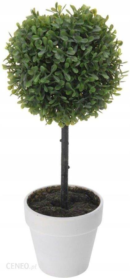 Drzewko Bukszpan W Doniczce Biały 40 Cm 40 Cm