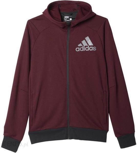 Sweatshirts Adidas men universal pullover with hood pullover