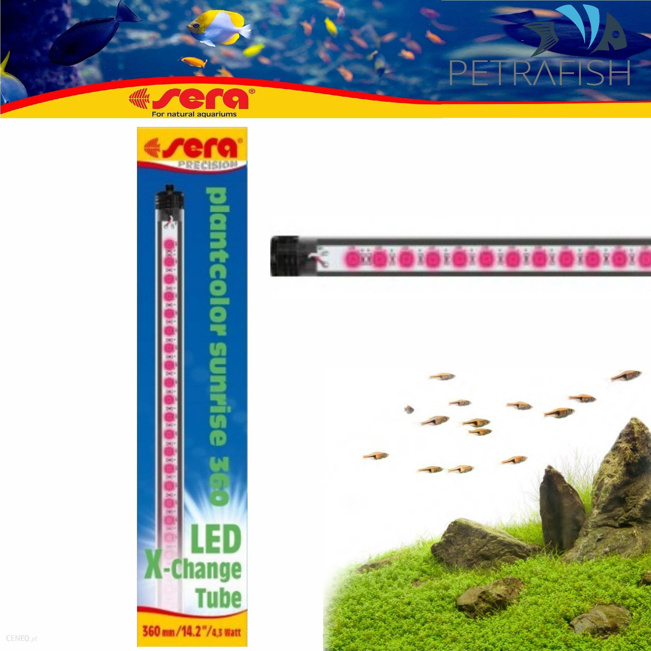 Sera Led Plantcolor Sunrise 820 Mm 11w 2450 K Oświetlenie Dla Roślin