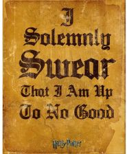 Harry Potter I Solemnly Swear Mini Poster - 40 x 50cm