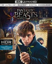 Fantastic Beasts and Where To Find Them (Fantastyczne zwierzęta i jak je znaleźć) [4K Blu-Ray]+[Blu-Ray]