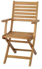 Krzeslo Ogrodowe Castorama Blooma Krzeslo Z Podlokietnikami Aland 45x59x90 Cm Skladane Ceny I Opinie Ceneo Pl