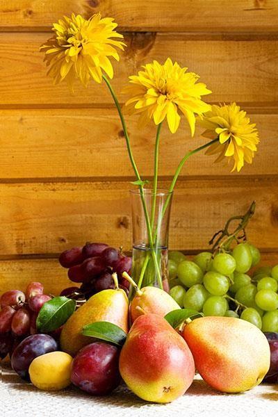 Najlepsze Obrazy Kwiaty I Owoce W Kuchni Cb431 Opinie I Atrakcyjne Ceny Na Ceneopl