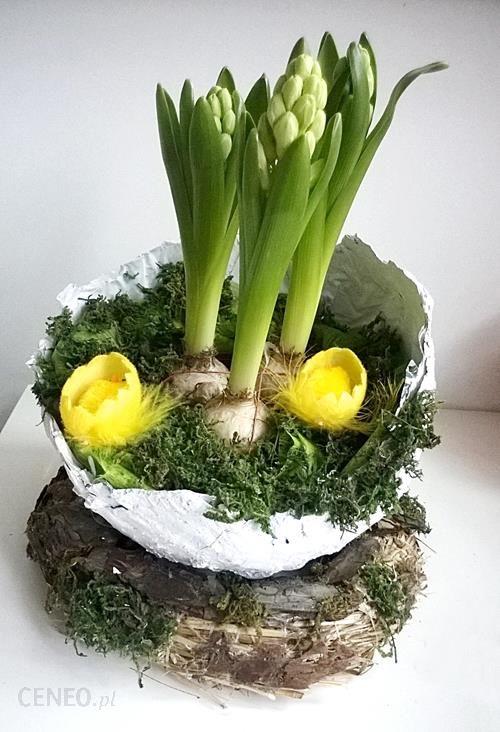 Wielkanocny Stroik Z Hiacyntami Opinie I Atrakcyjne Ceny Na Ceneopl