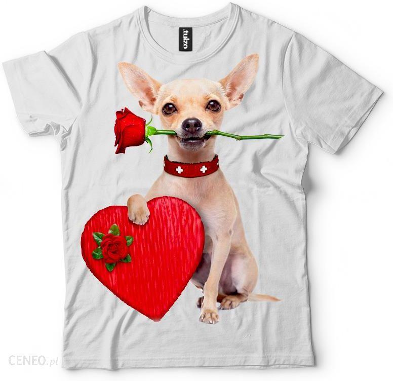 35eee226cb97 Koszulka Love Chihuahua - zdjęcie 1